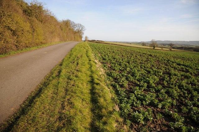 Road to Preston-on-Stour
