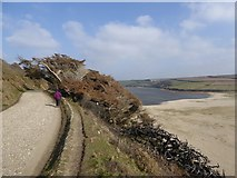 SW6424 : Footpath on northern side of Loe Pool by David Smith