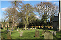 TM4287 : Trees in Weston Churchyard by Roger Jones