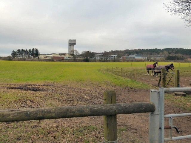 Daresbury Tower