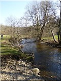 SX7880 : River Bovey by David Smith