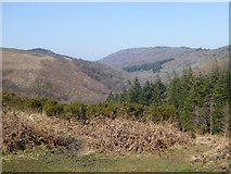 SX7780 : Trendlebere Down, Hisley Wood and the valley of the River Bovey by David Smith