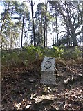 SX7878 : Modern marker by the Templer Way (Granite tramway) by David Smith
