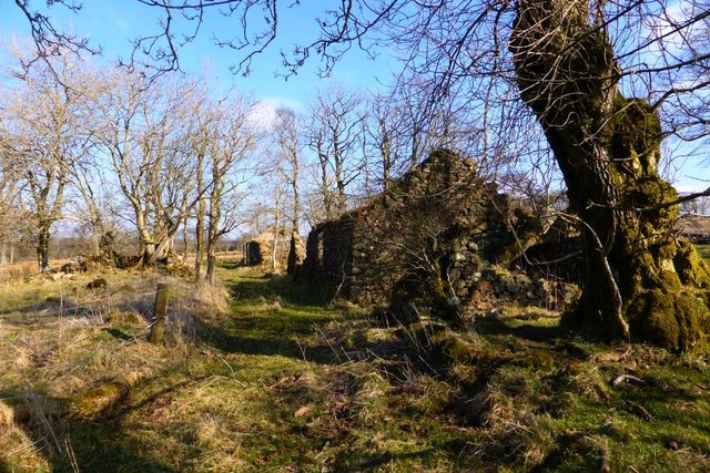 Row of cottage ruins at Syde [2]