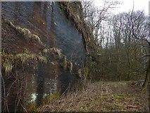 NS3979 : Bonhill Quarry by Lairich Rig