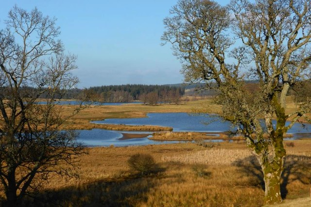 Douglas Water, flood plain