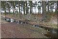 SU9052 : Ash Range stock control fence by Alan Hunt