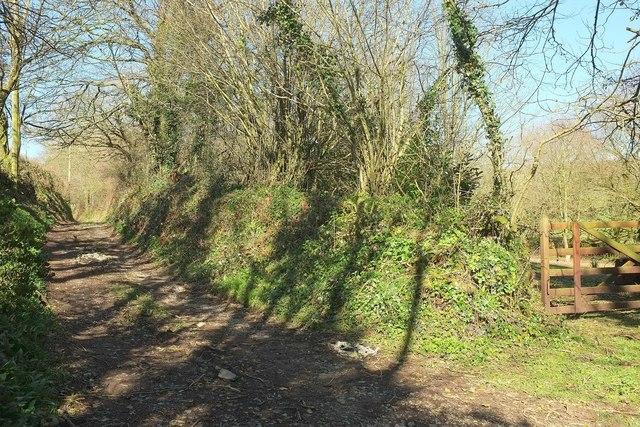 Footpath to Trewolland