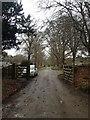 NH6036 : Towards Aldourie Farm by Dave Thompson