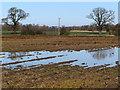 TA0245 : Field east of Scorborough by Paul Harrop