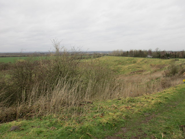 Bank above the Esk