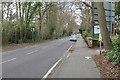 SU9868 : Christchurch Road, Virginia Water by Alan Hunt