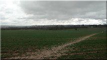 SP7389 : Looking across to Great Bowden by Michael Trolove