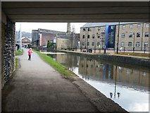 SE1437 : Leeds and Liverpool Canal, under Salts Mill Road, Shipley by Rich Tea