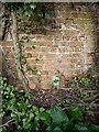 SJ6705 : OS benchmark - Lightmoor, culvert below Crackshall Lane by Richard Law