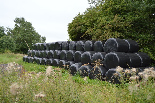 Wrapped bales