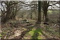 SX1858 : Parish boundary near South Park by Derek Harper
