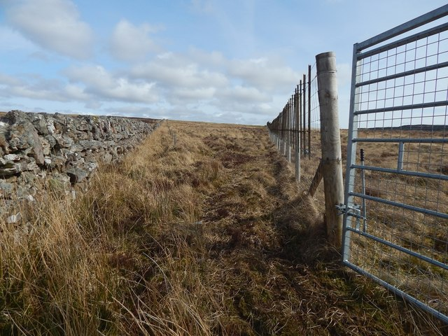 Deer fence and dry-stone wall