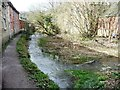 SO8902 : The Thames & Severn Canal, west of the A419, Chalford by Christine Johnstone