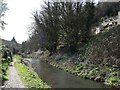 SO8802 : The Thames & Severn Canal, looking westwards by Christine Johnstone