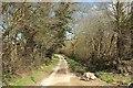 SX1661 : Lane to Braddock by Derek Harper