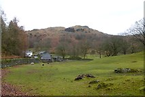 NY3404 : Towards Loughrigg Fell by DS Pugh