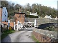 SO8802 : Brimscombe St Mary's level crossing, from the south by Christine Johnstone