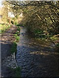 ST7693 : Cotswold Way by Tyley Stream by don cload