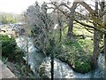 SO8104 : One of the many routes of the River Frome at Ryeford by Christine Johnstone