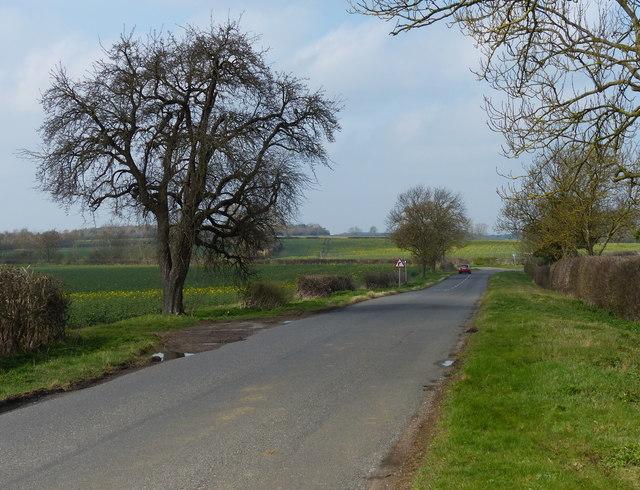 Lane leading to Woodnewton