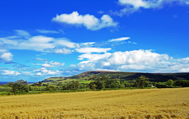 View towards Stoupe Brow and Ravenscar
