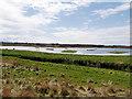 SD4214 : Martin Mere, Boat House Sluice and Vinson's Marsh by David Dixon