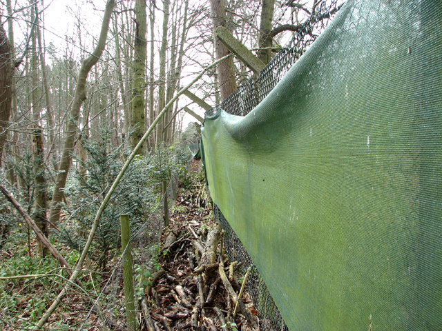 Green sheeting for privacy