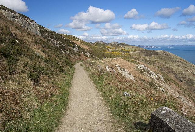 Coastal path near Bray