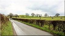 SK5854 : Looking towards Jackson's Hill by Chris Morgan