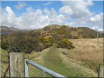 SH6214 : Off to Fegla Fawr-Mawddach Trail, Gwynedd by Martin Richard Phelan