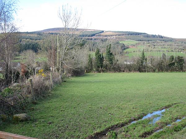 Fieldscape with Brandon Hill