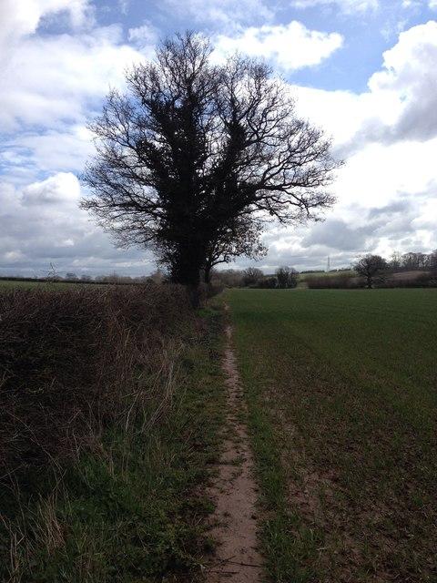 Path towards Longdon