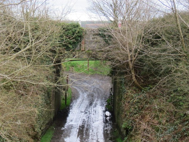Bridge on the old road to Inishannon