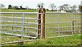 J5474 : Field gates, Drumawhy, Newtownards (April 2016) by Albert Bridge