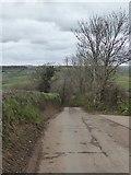 SS8404 : Broxfords Hill by David Smith