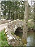 SS8302 : Lower Creedy Bridge and River Creedy by David Smith
