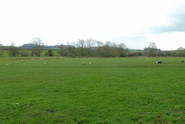 Field below Wakerley alongside the River Welland