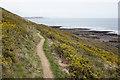 SS5184 : Coast Path approaching Oxwich Point by Bill Boaden