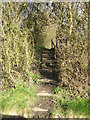 TM0757 : Footpath to St.Peter's Church & Mill Lane by Adrian Cable