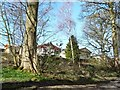 SE1239 : Homes in Broadstones Park, off Sheriff Lane by Christine Johnstone