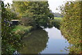 SU5966 : Kennet & Avon Canal by N Chadwick