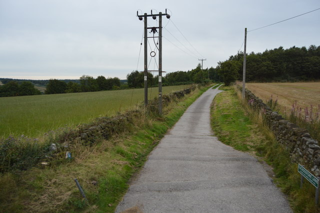 Cuckoostone Lane
