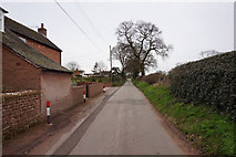 SJ6429 : Chapel Lane towards Warren Road by Ian S