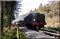 SE8286 : NYMR Steam Locomotive by Scott Robinson